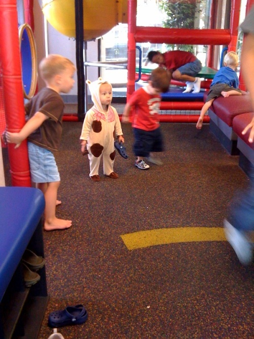 calvin cow costume
